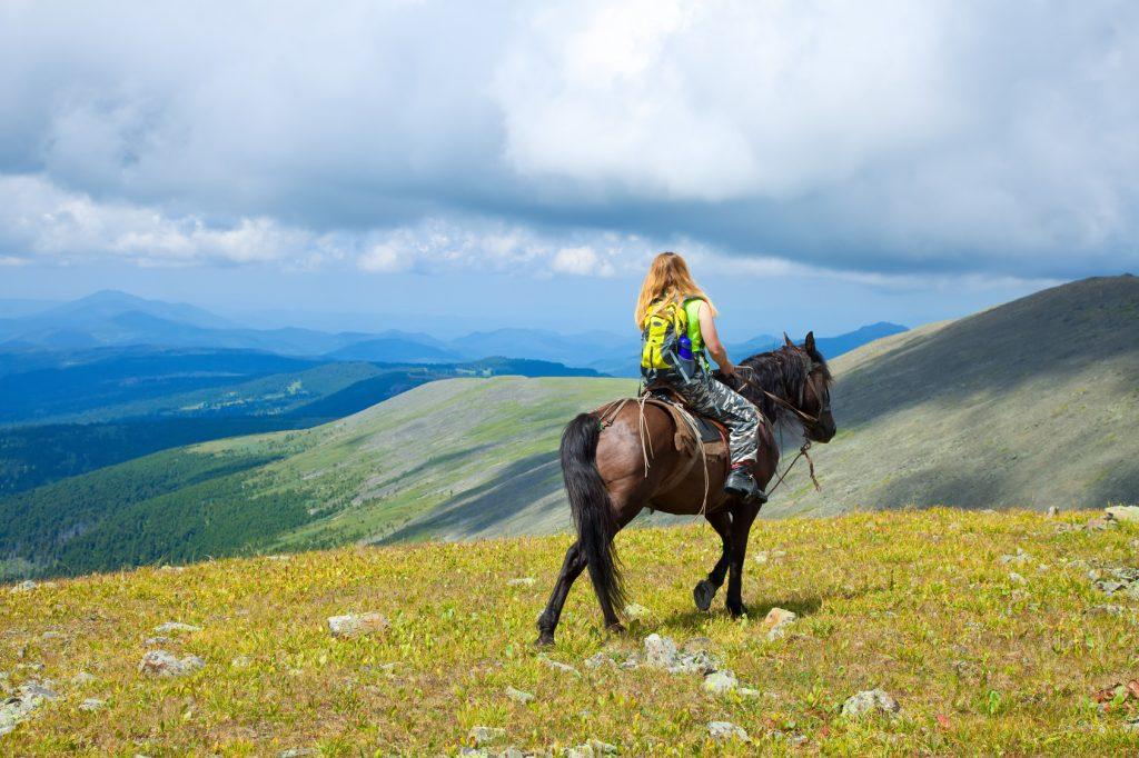 Konno przez góry